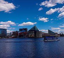 Baltimore Inner Harbor  by Leigh Anne Brader