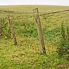 Of-Fence! by sarnia2