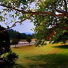 Farm View by jpryce