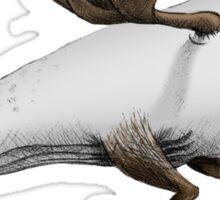 Moose Whale Sticker