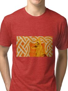 Anubis from Side by Sarah Kirk Tri-blend T-Shirt