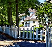 White Picket Fence by Susan Savad