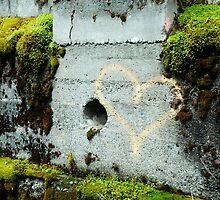 Love by Dawn Palmerley
