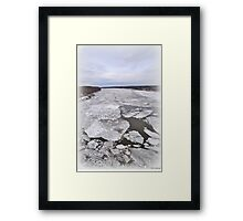 Breaking Out Of Winter Framed Print