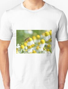 Hover fly on camomile Unisex T-Shirt