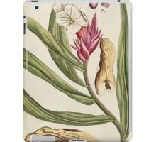 A curious herbal Elisabeth Blackwell John Norse Samuel Harding 1739 0362 Bitter and Sweet Costus iPad Case/Skin
