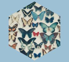 Wings Kids Clothes