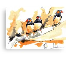Zebra Finches on a branch Canvas Print