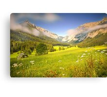 Summer meadow in the alps Canvas Print