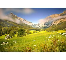 Summer meadow in the alps Photographic Print