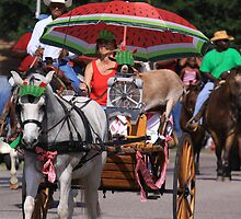 Watermelon Festival Parade in Hempstead, Texas by Linda Woods