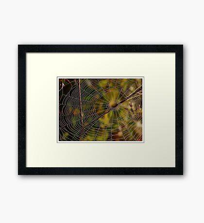A spider cobweb. by Brown Sugar , wiews (198) thanks ! Framed Print