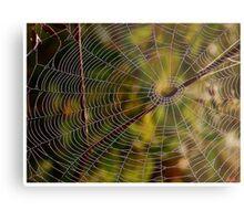 A spider cobweb. by Brown Sugar , wiews (198) thanks ! Metal Print