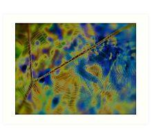 A spider cobweb  no.2 (Solarisation). Views (159) by Andrew (Brown Sugar) Thx! Art Print