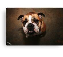 Pet Me Canvas Print
