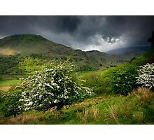 North Wales: How Green Was My Valley Photographic Print