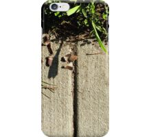 Easel iPhone Case/Skin