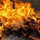 Burning Brush by RocklawnArts