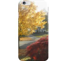 Fall in My Front Yard iPhone Case/Skin