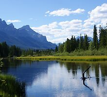 Canmore,Alberta by Barrie Daniels