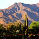 South Mountain, Arizona by Dave & Trena Puckett