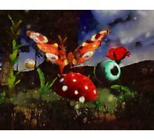 Butterfly Fantasy by Sarah Kirk Photographic Print