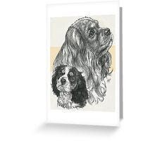 Cavalier King Charles Spaniel, Father & Son  Greeting Card