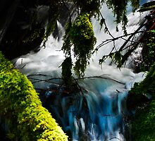 Umpqua Blue Hole by Bob Moore