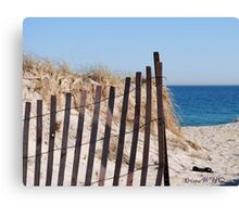 Long Island Beach Dune Canvas Print