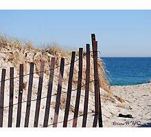 Long Island Beach Dune Photographic Print