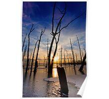 Sunrise on Frozen Lake Poster