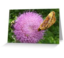 Butterfly and Bee Buffet Greeting Card