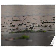 wet stones Poster