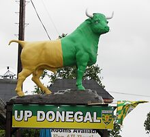 Up Donegal For GAA Finals - Burnfoot County Donegal Ireland . by mikequigley