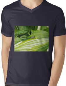 Aqua Dragonfly On Leaf  Mens V-Neck T-Shirt