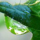 Dew Drop Crystal Ball by MaeBelle