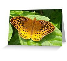 Tennessee Butterfly Greeting Card