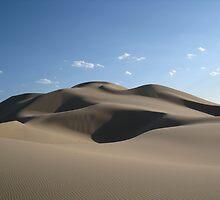 Mongolian Dunescape by ardwork