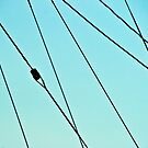 Dream Of Wires by James  Birkbeck Abstracts