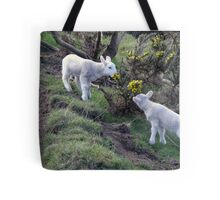 Lambs Puppy Food - Donegal Ireland  Tote Bag