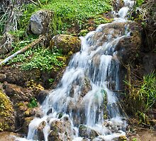 Waterfall in Shoshone Park Idaho 1 by Forrest  Ray