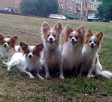 """We Are Family aka """"Happy Pappies"""" by leystan"""