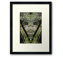 Mr Forest Framed Print