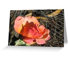 Pink Yellow Rose Greeting Card