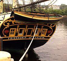 Stern Friendship by Kenric A. Prescott