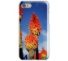 Red Hot Pokers iPhone Case/Skin