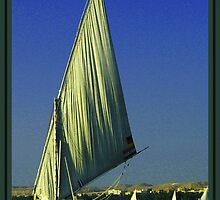 The Felucca On The Nile by Denise J. Johnson