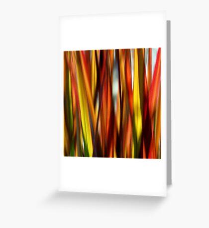 Grasslands Greeting Card