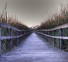 Lyndeshores boardwalk in the evening by dphillips2010