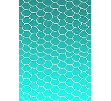 Teal Scales Photographic Print